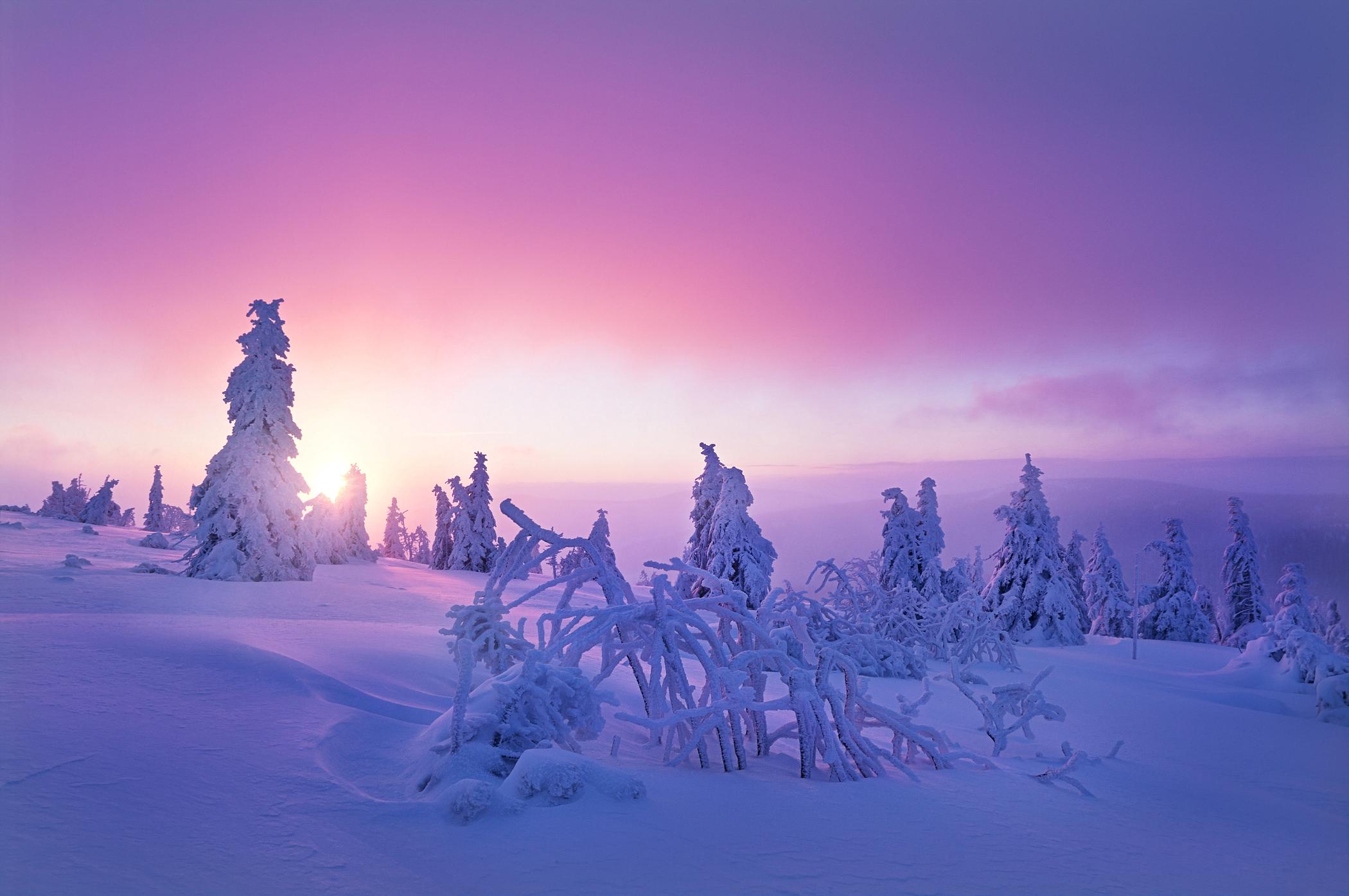 Winter in Bohemia