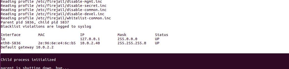 Define default network interface for application