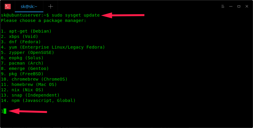 Sysget - A Front-end For Popular Package Managers - OSTechNix