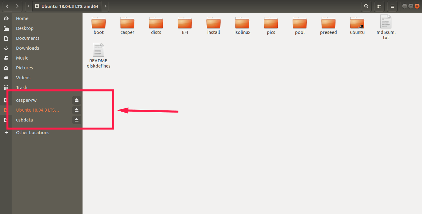 check partitions in persistent usb drive