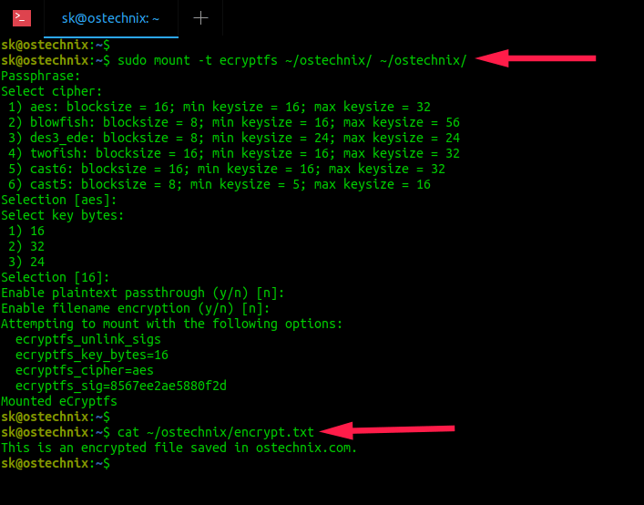 view contents of file after remounting encrypted directory