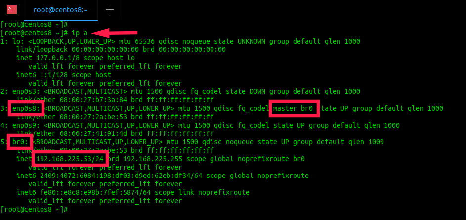 Check KVM bridge IP address from command line in Linux