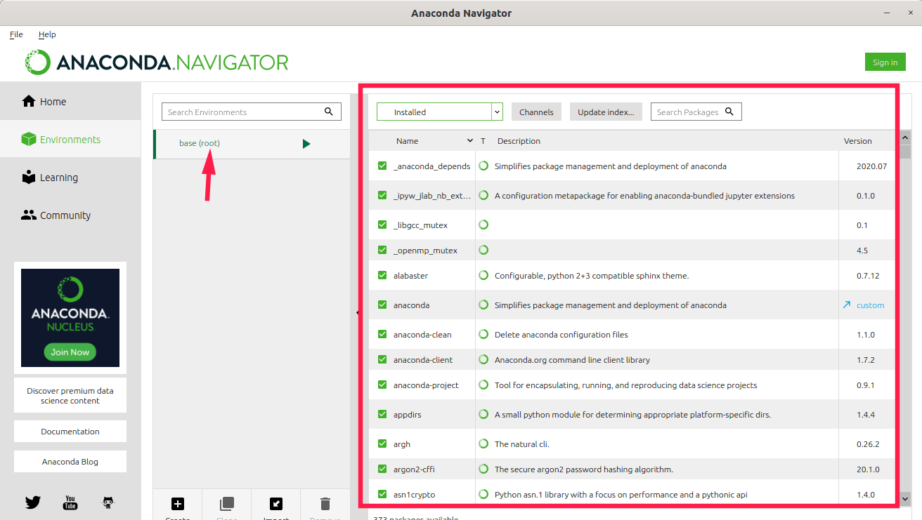 View installed packages in conda environment