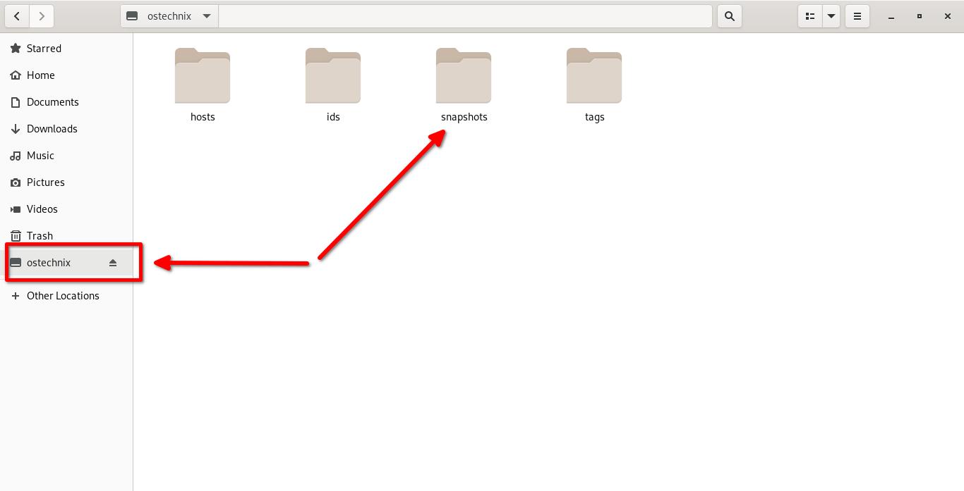 Monte el repositorio de Restic en el sistema de archivos